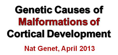 Announcement Nature Genetics Paper April 2013