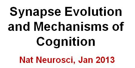 Link to Nature Neuroscience Paper 2012